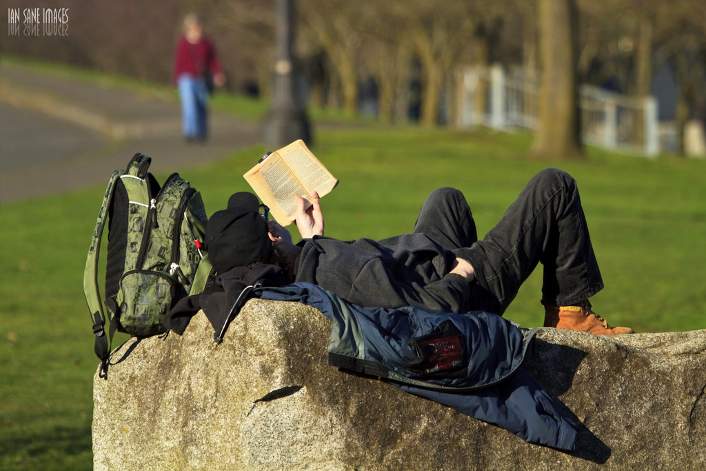 読書する光景