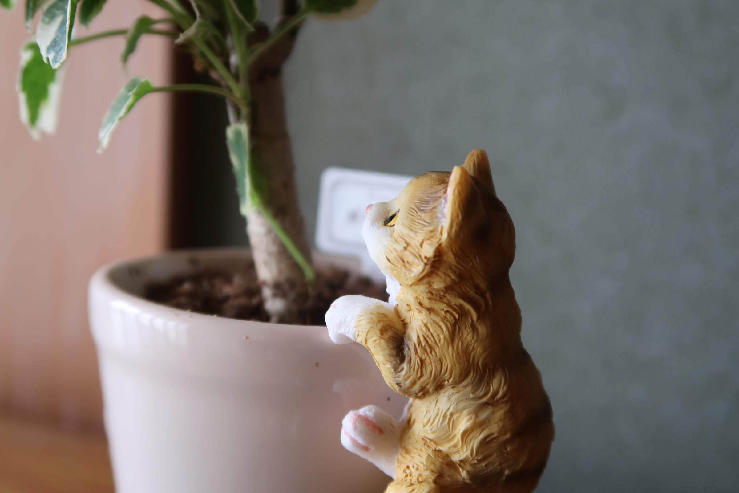 猫のオブジェ