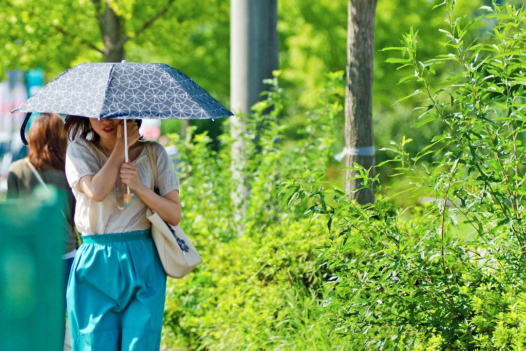 日傘の女性