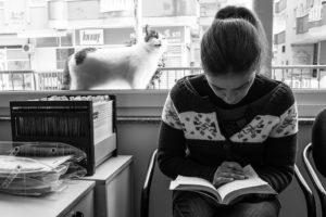 紙の本を読む女性