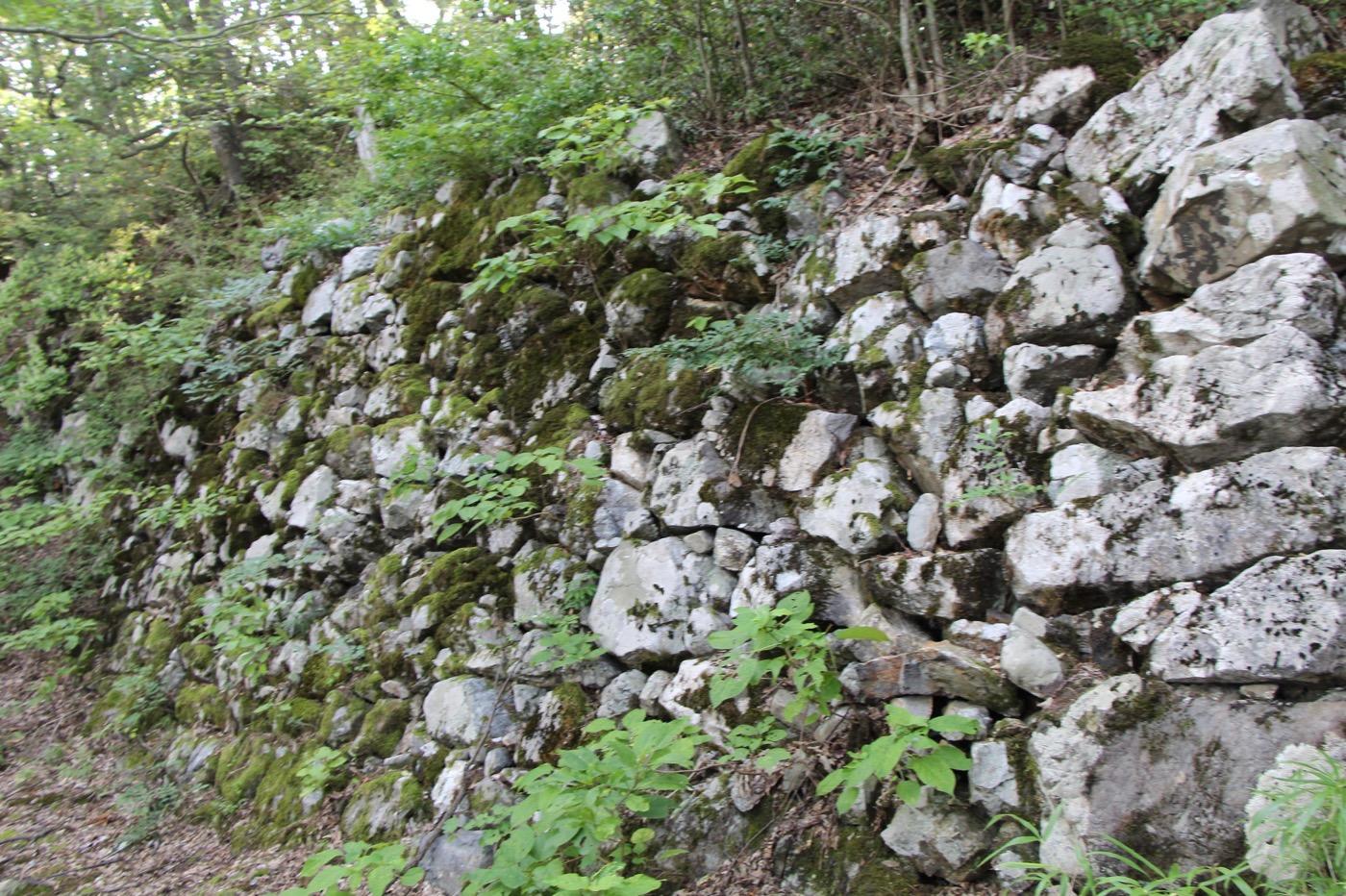 小谷城の石垣