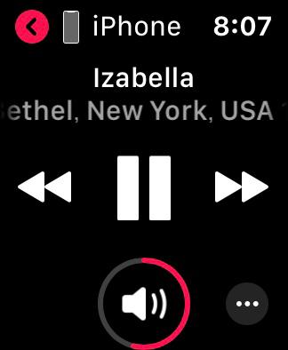 Apple Watch のミュージックアプリ