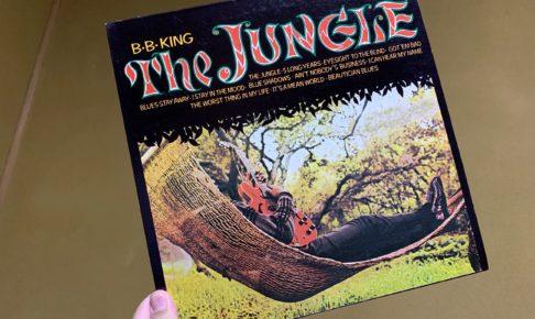 bb king the jungle