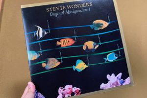 Original Musiquarium stevie