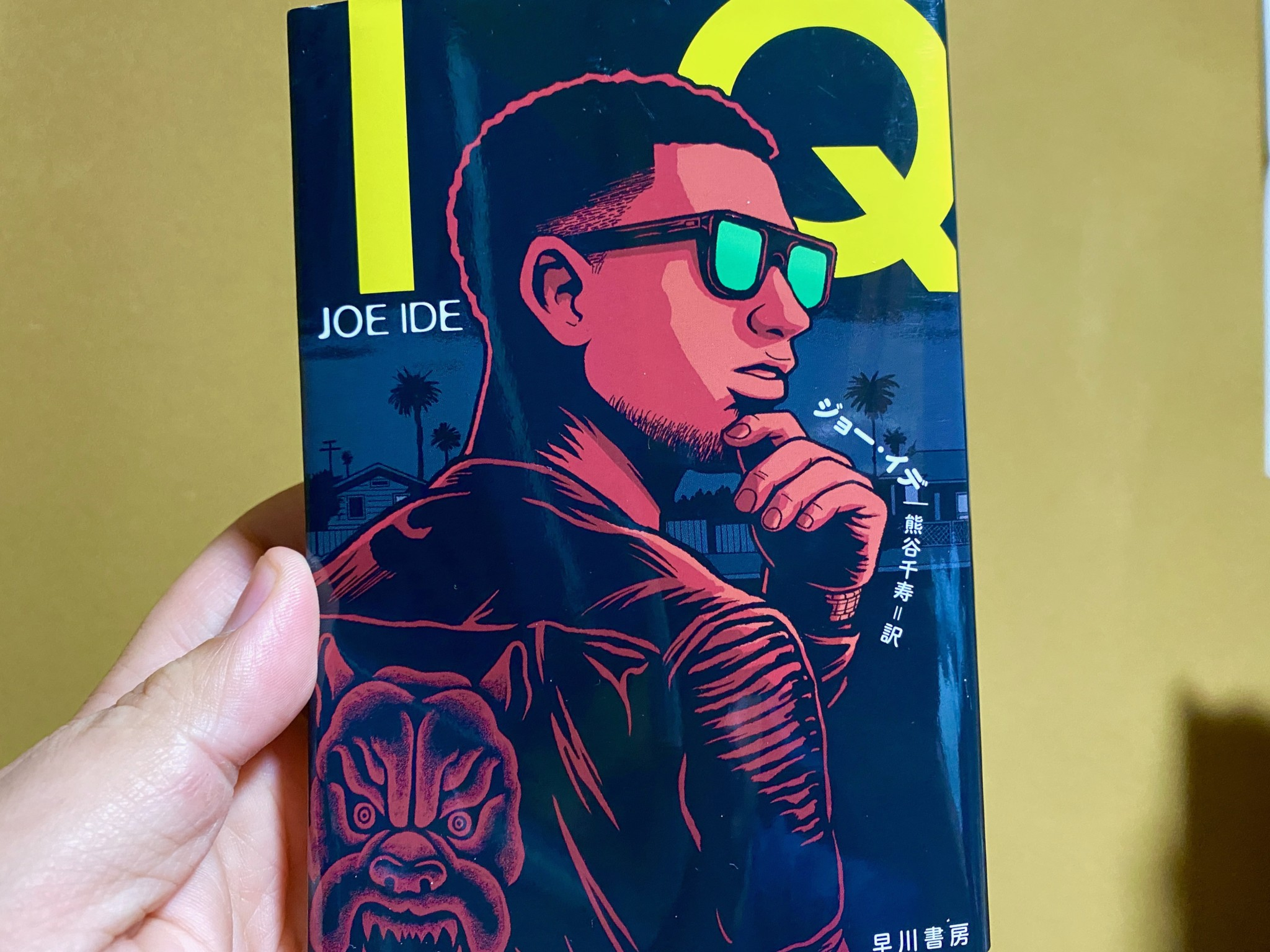 joe ide IQ