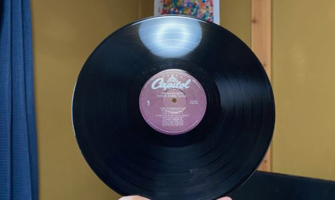 vinyl dig fun